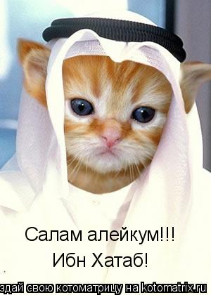 Котоматрица: Салам алейкум!!! Ибн Хатаб!
