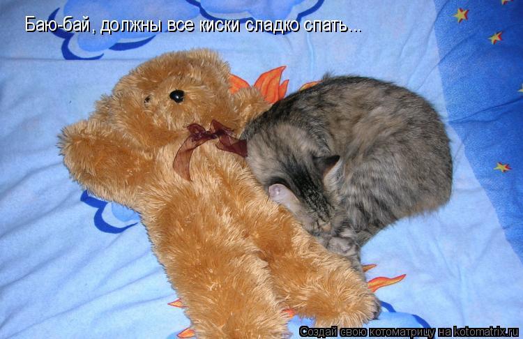 Котоматрица: Баю-бай, должны все киски сладко спать...