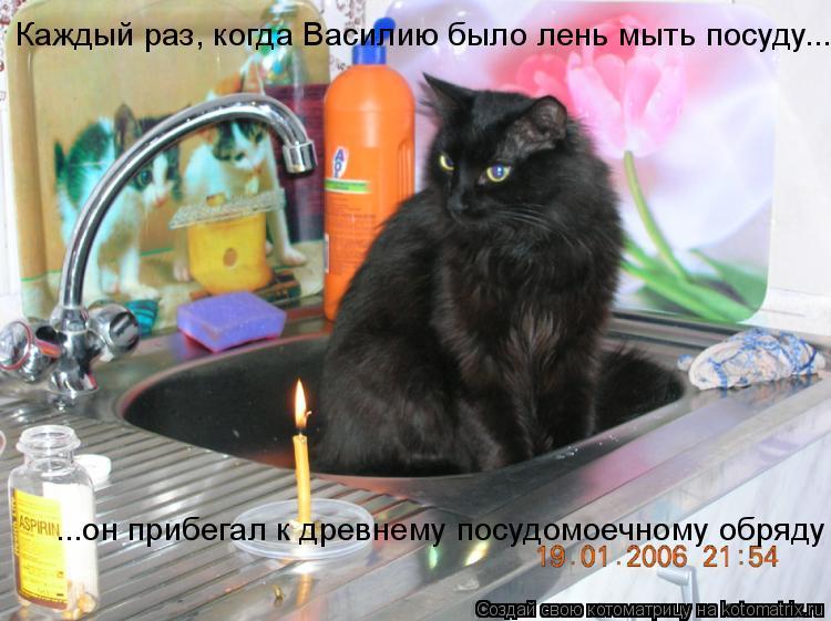 Котоматрица: Каждый раз, когда Василию было лень мыть посуду... ...он прибегал к древнему посудомоечному обряду