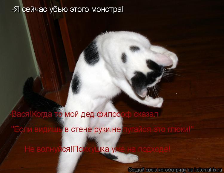 """Котоматрица: -Я сейчас убью этого монстра! -Вася!Когда то мой дед философ сказал  """"Если видишь в стене руки,не пугайся-это глюки!"""" Не волнуйся!Психушка уже"""