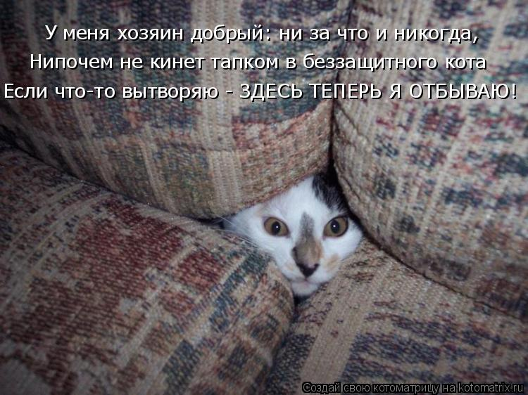 Котоматрица: У меня хозяин добрый: ни за что и никогда,  Нипочем не кинет тапком в беззащитного кота Если что-то вытворяю - ЗДЕСЬ ТЕПЕРЬ Я ОТБЫВАЮ!