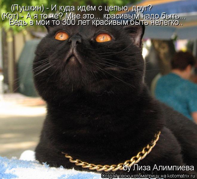 Котоматрица: (Пушкин) - И куда идём с цепью, друг? (Кот) - А я то чё? Мне это... красивым надо быть... Ведь в мои то 300 лет красивым быть нелегко.. by Лиза Алимпи