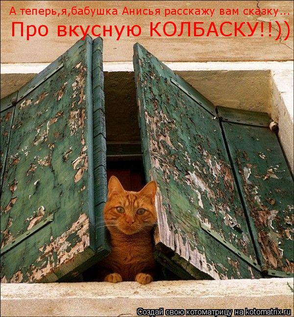 Котоматрица: А теперь,я,бабушка Анисья расскажу вам сказку...  Про вкусную КОЛБАСКУ!!))