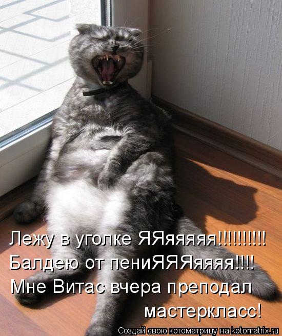 Котоматрица: Лежу в уголке ЯЯяяяяя!!!!!!!!!! Балдею от пениЯЯЯяяяя!!!! Мне Витас вчера преподал мастеркласс!
