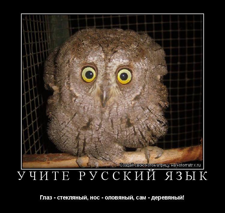 Котоматрица: Учите русский язык Глаз - стекляный, нос - оловяный, сам - деревяный!