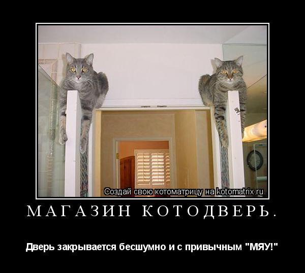 """Котоматрица: Магазин Котодверь. Дверь закрывается бесшумно и с привычным """"МЯУ!"""""""