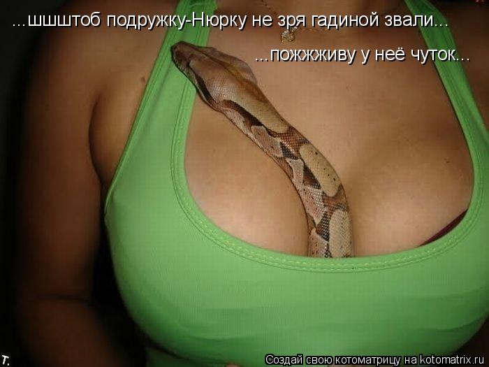 Котоматрица: ...шшштоб подружку-Нюрку не зря гадиной звали... ...пожжживу у неё чуток...
