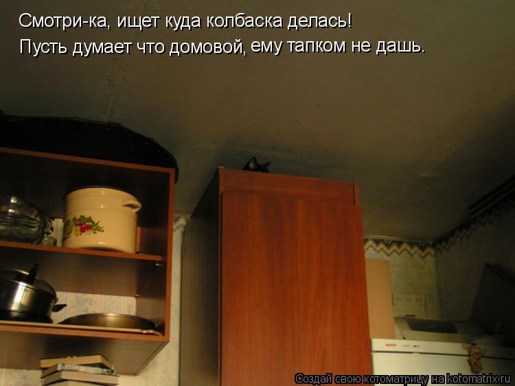 Котоматрица: Смотри-ка, ищет куда колбаска делась! Пусть думает что домовой, ему тапком не дашь.