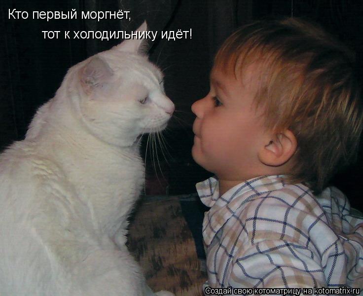 Котоматрица: Кто первый моргнёт, тот к холодильнику идёт!