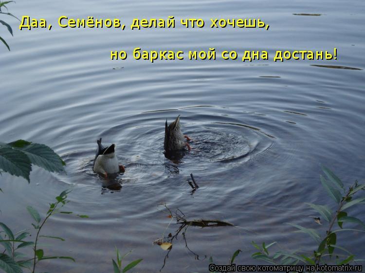 Котоматрица: Даа, Семёнов, делай что хочешь, но баркас мой со дна достань!