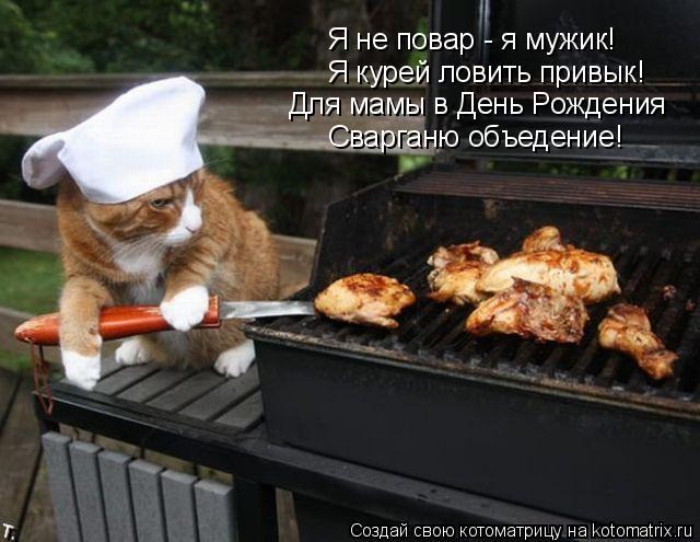 Котоматрица: Я не повар - я мужик! Я курей ловить привык! Для мамы в День Рождения Сварганю объедение!