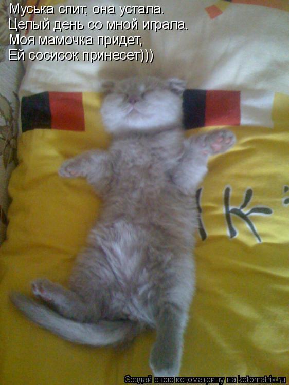 Котоматрица: Муська спит, она устала. Целый день со мной играла. Моя мамочка придет, Ей сосисок принесет)))