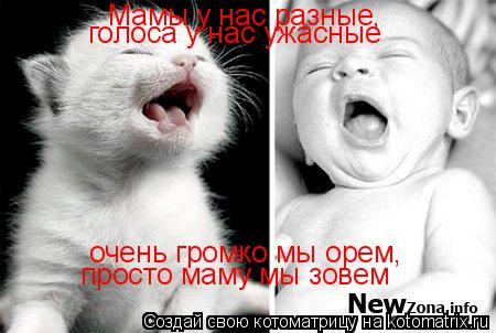 Котоматрица: Мамы у нас разные, голоса у нас ужасные очень громко мы орем, просто маму мы зовем