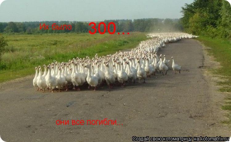 Котоматрица: Их было  300... они все погибли...