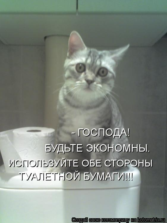 Котоматрица: ИСПОЛЬЗУЙТЕ ОБЕ СТОРОНЫ ТУАЛЕТНОЙ БУМАГИ!!! БУДЬТЕ ЭКОНОМНЫ.   - ГОСПОДА!