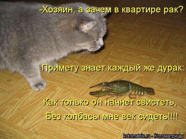Котоматрица: -Хозяин, а зачем в квартире рак? Примету знает каждый же дурак: Как только он начнет свистеть, Без колбасы мне век сидеть!!!!