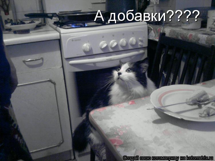 Котоматрица: А добавки????