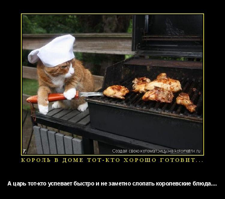 Котоматрица: Король в доме тот-кто хорошо готовит... А царь тот-кто успевает быстро и не заметно слопать королевские блюда....