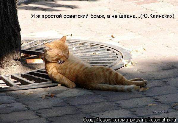 Котоматрица: Я ж простой советский бомж, а не шпана...(Ю.Клинских)