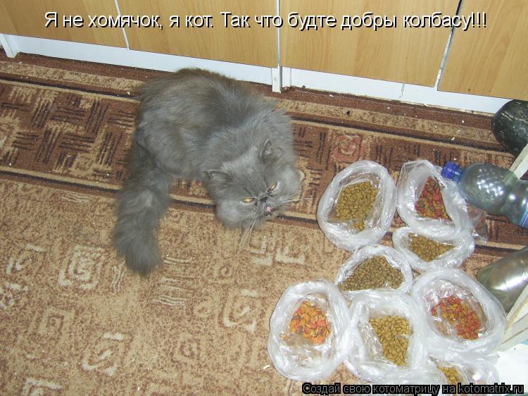 Котоматрица: Я не хомячок, я кот. Так что будте добры колбасу!!!