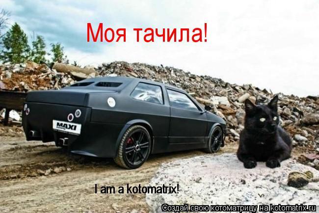 Котоматрица: Моя тачила! I am a kotomatrix! I am a kotomatrix!