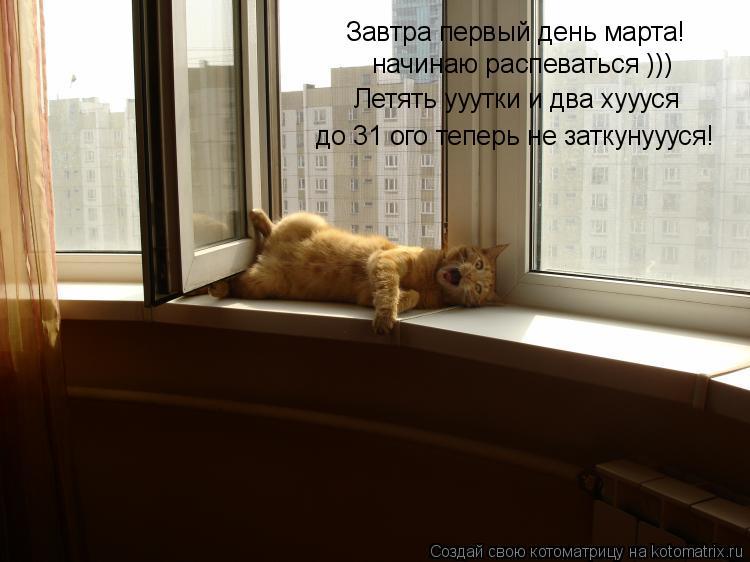 Котоматрица: Завтра первый день марта! начинаю распеваться ))) Летять ууутки и два хуууся до 31 ого теперь не заткунуууся!