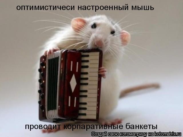 Котоматрица: оптимистичеси настроенный мышь проводит корпаративные банкеты