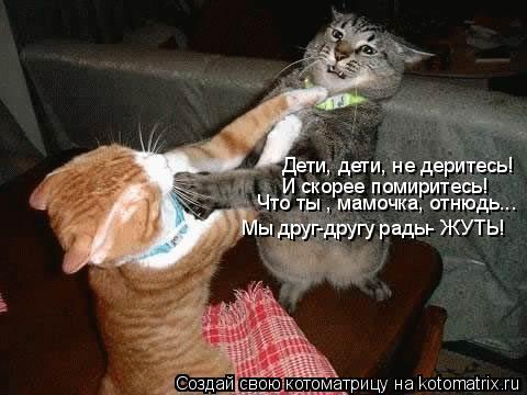 Котоматрица: Дети, дети, не деритесь! И скорее помиритесь! Что ты , мамочка, отнюдь... Мы друг-другу рады- ЖУТЬ!