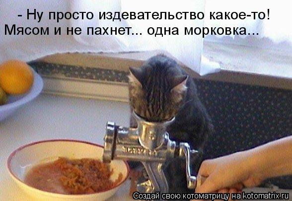 Котоматрица: - Ну просто издевательство какое-то! Мясом и не пахнет... одна морковка...