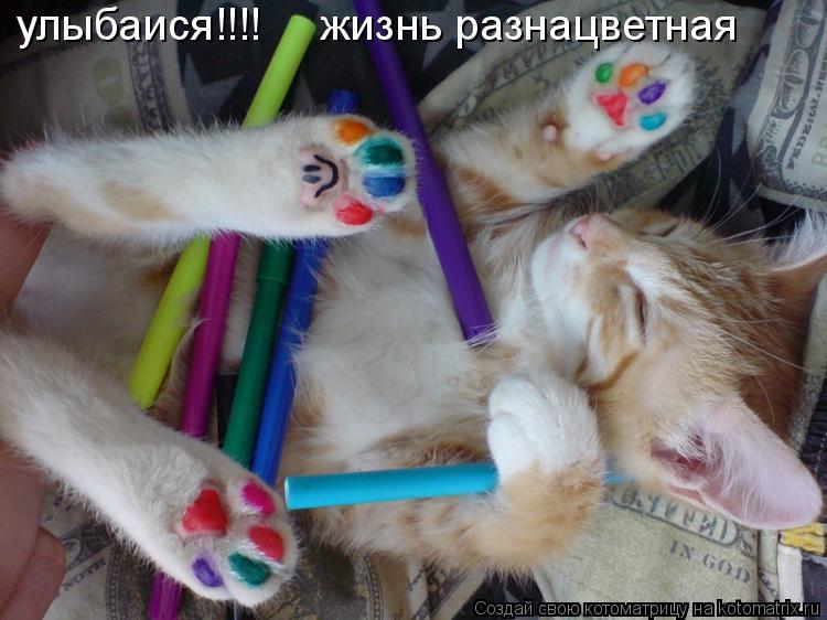 Котоматрица: улыбаися!!!!     жизнь разнацветная