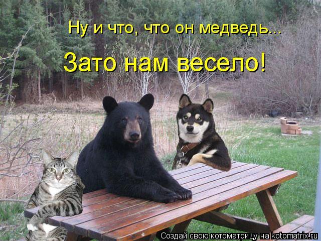 Котоматрица: Ну и что, что он медведь... Зато нам весело!
