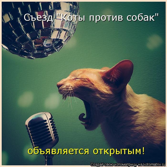 """Котоматрица: Съезд """"Коты против собак""""  объявляется открытым!"""