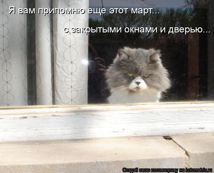 Котоматрица: Я вам припомню еще этот март... с закрытыми окнами и дверью...