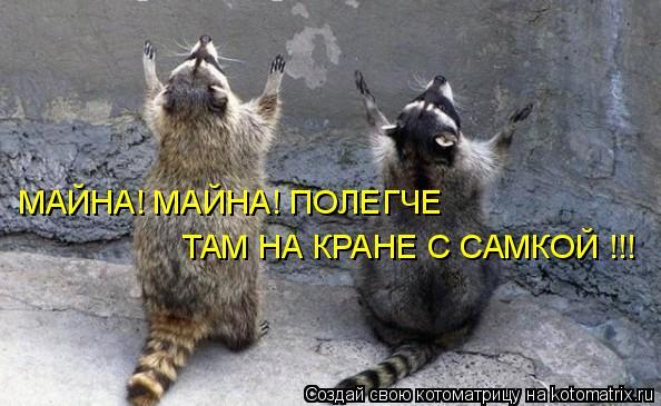 Котоматрица: МАЙНА! МАЙНА! ПОЛЕГЧЕ  ТАМ НА КРАНЕ С САМКОЙ !!!