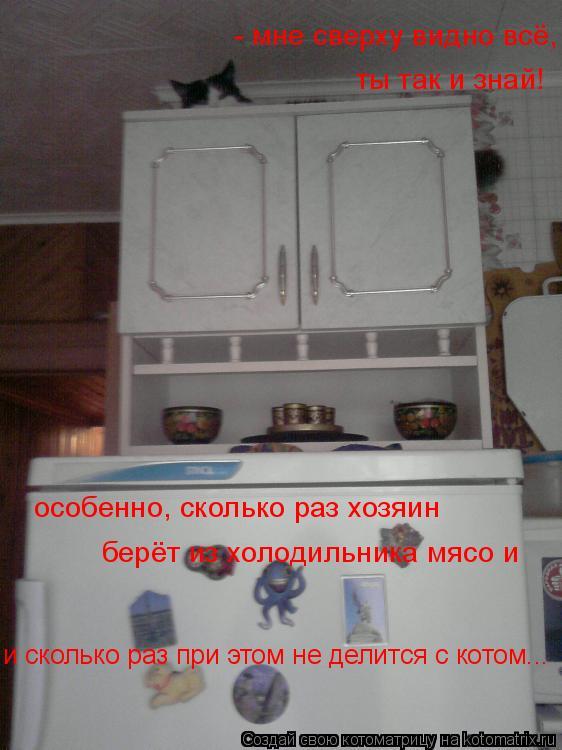 Котоматрица: - мне сверху видно всё, ты так и знай! особенно, сколько раз хозяин берёт из холодильника мясо и и сколько раз при этом не делится с котом...