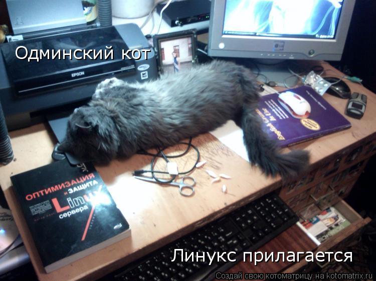 Котоматрица: Одминский кот Линукс прилагается