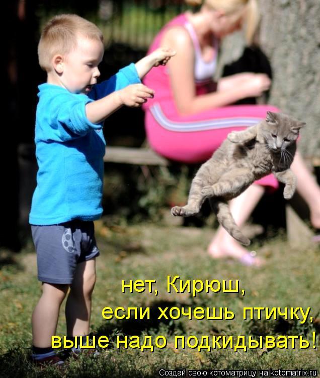 Котоматрица: нет, Кирюш, если хочешь птичку, выше надо подкидывать!