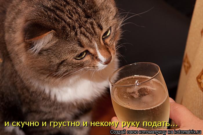 http://kotomatrix.ru/images/lolz/2009/10/06/372025.jpg