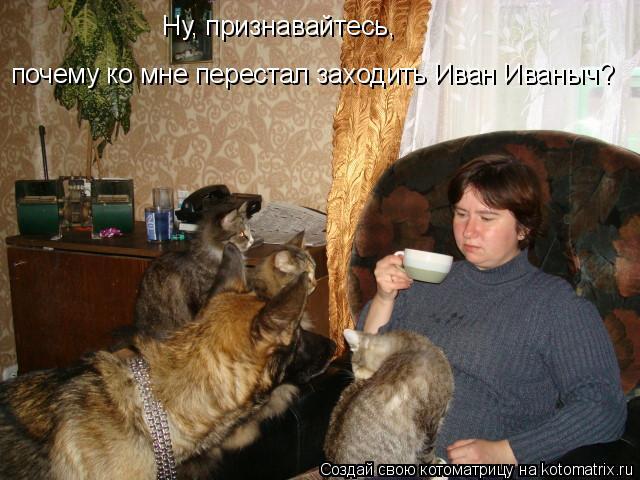 Котоматрица: Ну, признавайтесь, почему ко мне перестал заходить Иван Иваныч?
