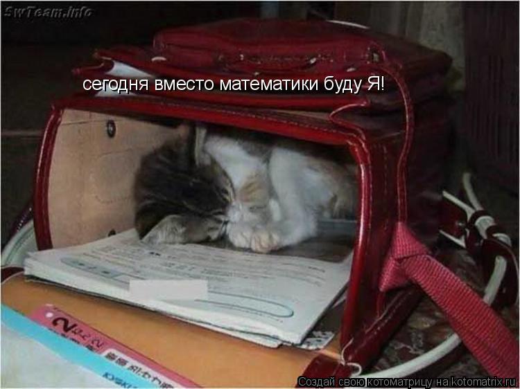 Котоматрица: сегодня вместо математики буду Я!