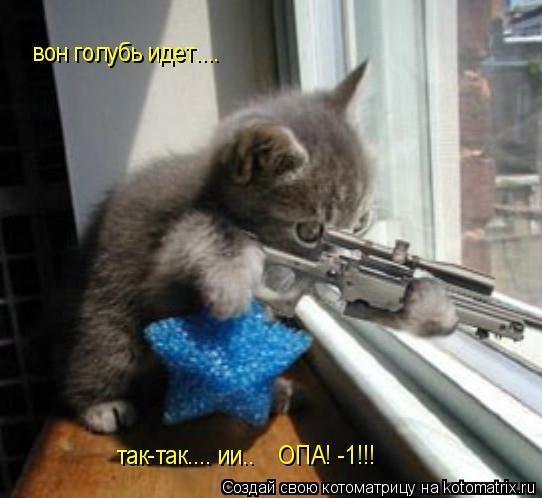 Котоматрица: так-так.... ии..    ОПА! -1!!! вон голубь идет....