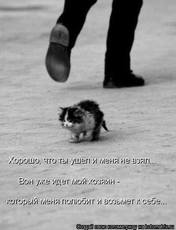 Котоматрица: Хорошо, что ты ушел и меня не взял... Вон уже идет мой хозяин -  который меня полюбит и возьмет к себе...