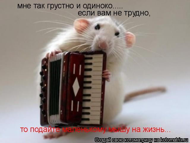 Котоматрица: мне так грустно и одиноко..... если вам не трудно, то подайте маленькому мышу на жизнь...