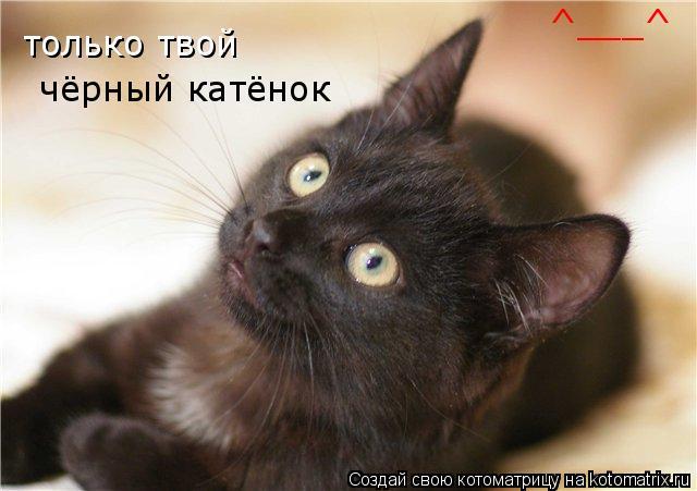 Котоматрица: только твой чёрный катёнок ^___^
