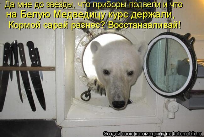 Котоматрица: Да мне до звезды, что приборы подвели и что  на Белую Медведицу курс держали, Кормой сарай разнес? Восстанавливай!