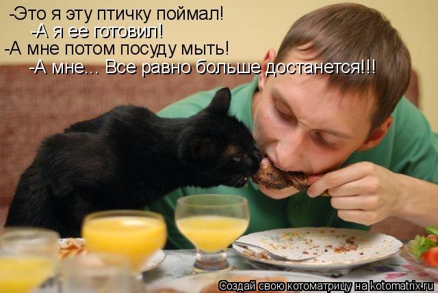Котоматрица: -Это я эту птичку поймал! -А я ее готовил! -А мне потом посуду мыть! -А мне... Все равно больше достанется!!!