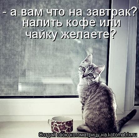 Котоматрица: - а вам что на завтрак? налить кофе или чайку желаете? налить кофе или  чайку желаете?