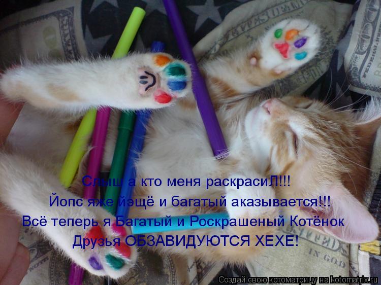 Котоматрица: Слыш а кто меня раскрасиЛ!!! Йопс яже йэщё и багатый аказывается!!! Всё теперь я Багатый и Роскрашеный Котёнок Друзья ОБЗАВИДУЮТСЯ ХЕХЕ!