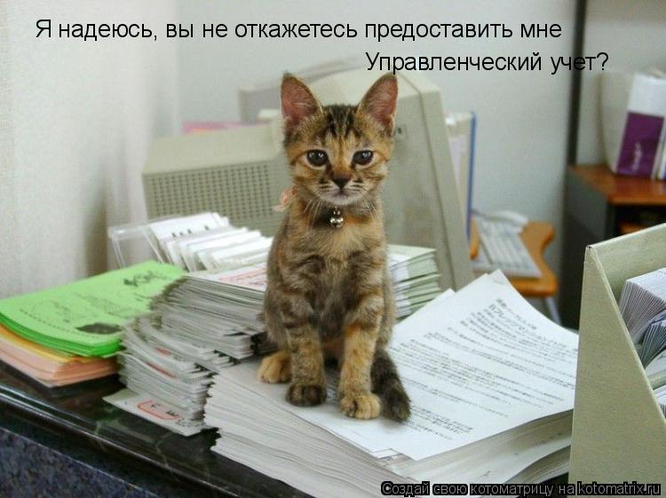 Котоматрица: Я надеюсь, вы не откажетесь предоставить мне Управленческий учет?