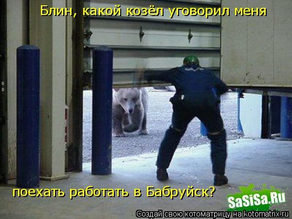 Котоматрица: Блин, какой козёл уговорил меня  поехать работать в Бабруйск?